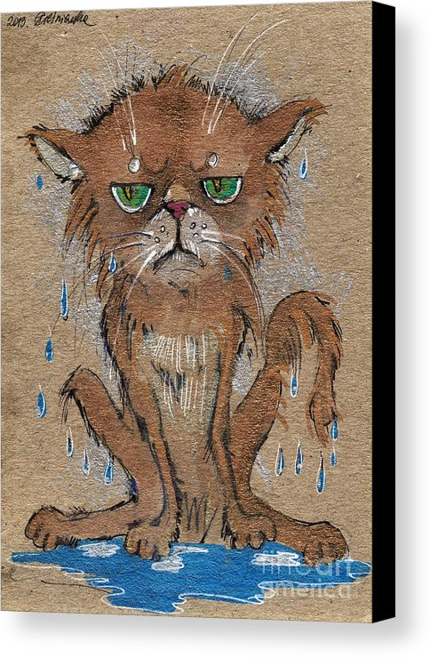 wet-persian-cat-angel-tarantella-canvas-print